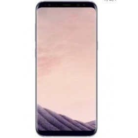 Wholesale Samsung Galaxy S8 Plus SM-G955F Unlocked 64GB - International Version/No Warranty (GSM) ( LTE band 1, 2, 3, 4, 5, 7, 8, 17, 20, 28
