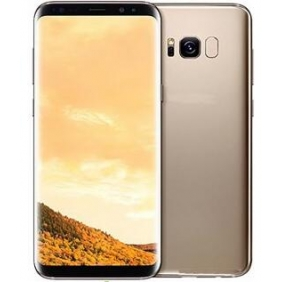 Wholesale Samsung Galaxy S8 Plus Factory Unlocked Smart Phone 64GB Dual SIM - International Version (Gold)